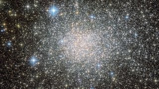 Zooming on the star cluster Terzan