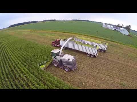 2017 Corn Silage Harvest at Convoy Dairy Convoy Ohio