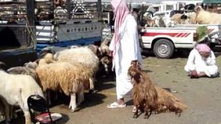 Arabie saoudite: préparatifs pour la fête de l