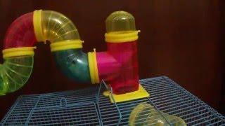 Nova gaiola do Hamster com tubos