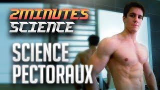 La Meilleure SÉANCE PECTORAUX ? La Science en 2 minutes (ou presque)