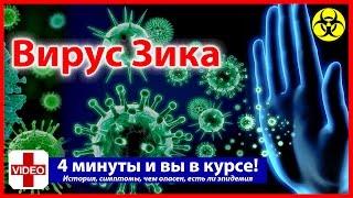 ВИРУС ЗИКА - Лихорадка, Симптомы, осложнения, История, есть ли эпидемия вируса Зика