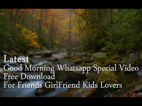 Xxx Mp4 Latest Good Morning Whatsapp Special Video Free Download For Friends GirlFriend Kids Lovers 3gp Sex