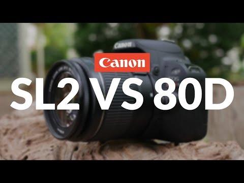 Xxx Mp4 Canon SL2 200D Vs Canon 80D Head To Head Comparison 3gp Sex