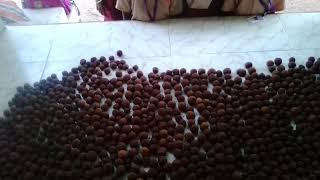 PUMS KEERANUR - விதைபந்து தயார்...