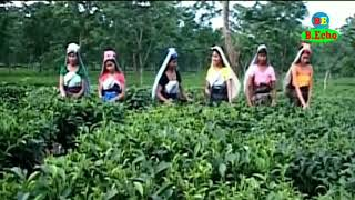 Swmkwr Swmkwr Saha Bilai- Bodo Song Video