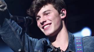 """Shawn Mendes Was Inspired This Hit Pop Star For His Latest Hit """"There"""