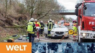Friederike tobt über NRW: Orkantief legt Bahn lahm und verursacht Verkehrschaos