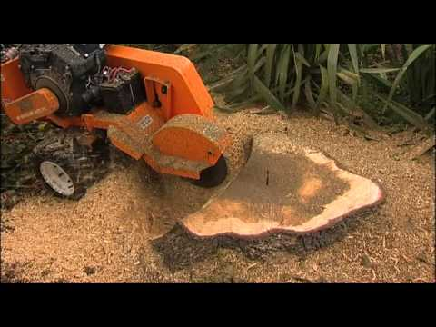 Stump Humper Stump Grinder