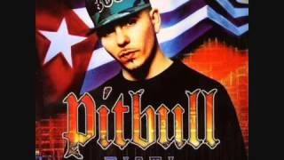 Pitbull  Full Album