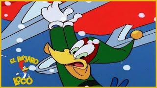 El Pajaro Loco 🎄 Las Doce Mentiras Del Navidad🎄 Especial de Navidad 🎄 Dibujos Animados en Español 🎄