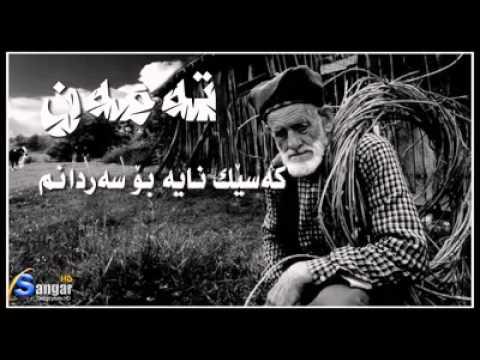 shiery taman kurdi