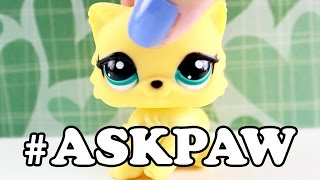 LPS - #AskPaw Ask Me Anything! (BULLYING! DEPRESSION! FRIENDS!)