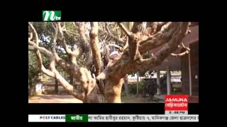Bangladesh bhuter natok Natok ধারাবাহিক নাটক এ নেলসন নাম্বার