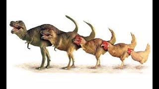 هل تعلم أنه يمكننا الرجوع إلى الماضى و رؤية الدايناصورات ؟؟!