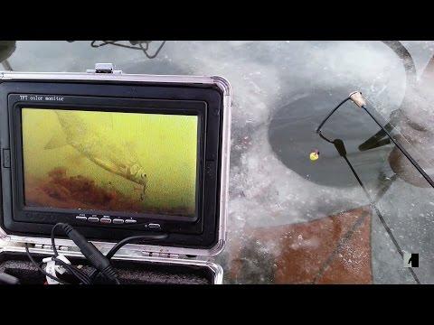 камеры на рыбной ловле