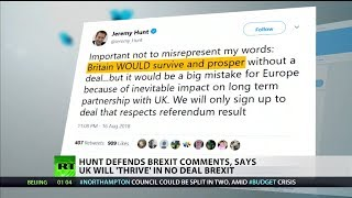 Hunt backtracks and defends comments after saying Brits would regret Brexit