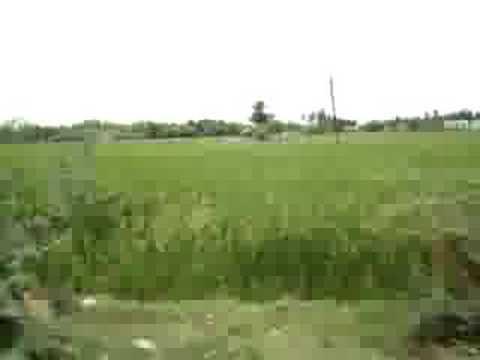 Tamil Nadu Villages