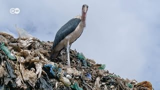 The Rich, the Poor and the Trash   DW Documentary
