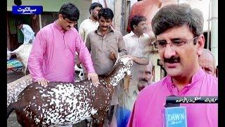 Man look alike CM Sindh gain public attention in Sialkot