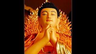 Nhạc niệm  Nam Mô A Di Đà Phật  rất hay dài 2 tiếng