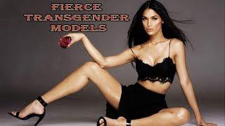 10 Most Fierce Transgender Models   Amazing Top 10