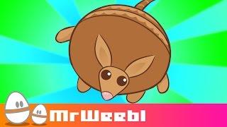 Armadillo : animated music video : MrWeebl