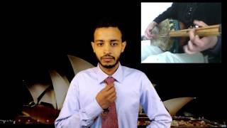Mc talib تشكيل الحكومة