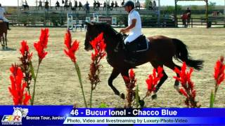 46 - Bucur Ionel - Chacco Blue - 2016 09 15 13 51 55