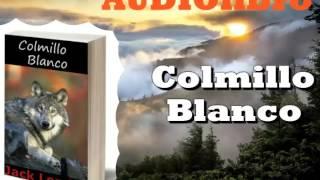 Colmillo Blanco De Jack London (audiolibros en español completos )