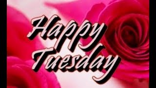 Good morning Tuesday images, best good morning images, whatsapp images and beautiful flowers images