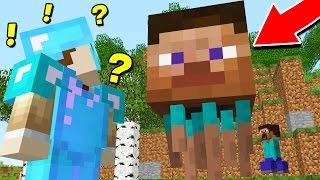 WHEN MINECRAFT GOES WRONG..
