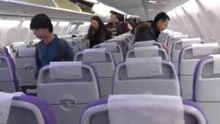 Air China Boeing 737-800 Economy Class Beijing-Harbin, China