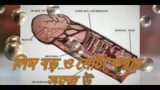 পুরুষের লিঙ্গ বড় মোটা করার উপায়। Bangla sex tips Full HD