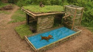 Build Beautiful Wild Dog