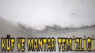 Tavandaki Küf  Ve Rutubet Nasıl Temizlenir /Küf Sökücü