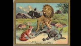 Лав, магаре и лисица