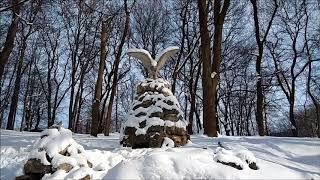 Ессентуки  Курортный парк зимой.