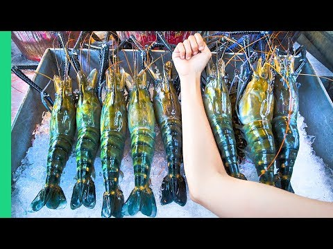 Xxx Mp4 RECORD BREAKING THAI PRAWNS The ULTIMATE Thai Seafood Experience In Bangkok Thailand 3gp Sex