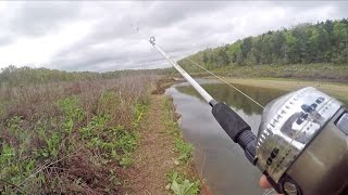 GRABBING Sucker Fish from a River