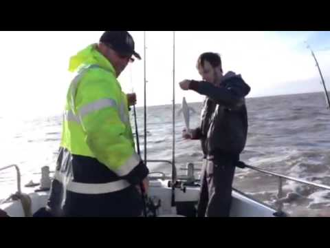 Xxx Mp4 Rubber Blue Whale Fishing Prank 3gp Sex