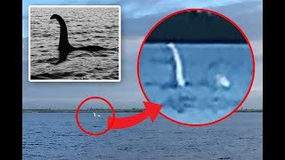Loch Ness Monster Spotted In Russian Lake