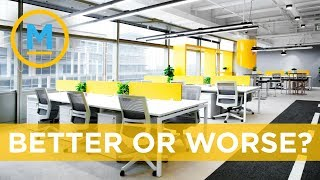 Open concept offices aren't as productive as you think | Your Morning
