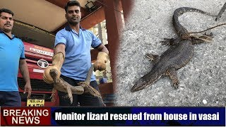 Monitor lizard rescued from house in vasai