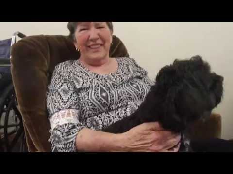 Xxx Mp4 Woman S Emotional Reunion With Missing Dog 3gp Sex