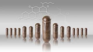 Revolutionizing Ganoderma Biotechnology