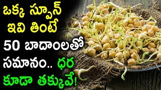 Amazing Food! Do you Know One Chickpea Sprouts is equal to 50 Almonds | Remix King