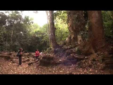 Community-linked conservation using Devakad (sacred groves)