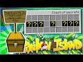 Lachlan S Birthday Gift Pixelmon Island Smp 4