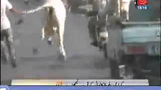 Karachi Shorab Goth Cow Mandi Studio Qurbani Video